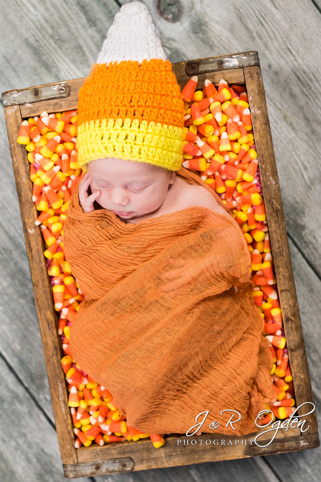 Newborn in Candy Corn - Fall Newborn Photographers Bangor Maine
