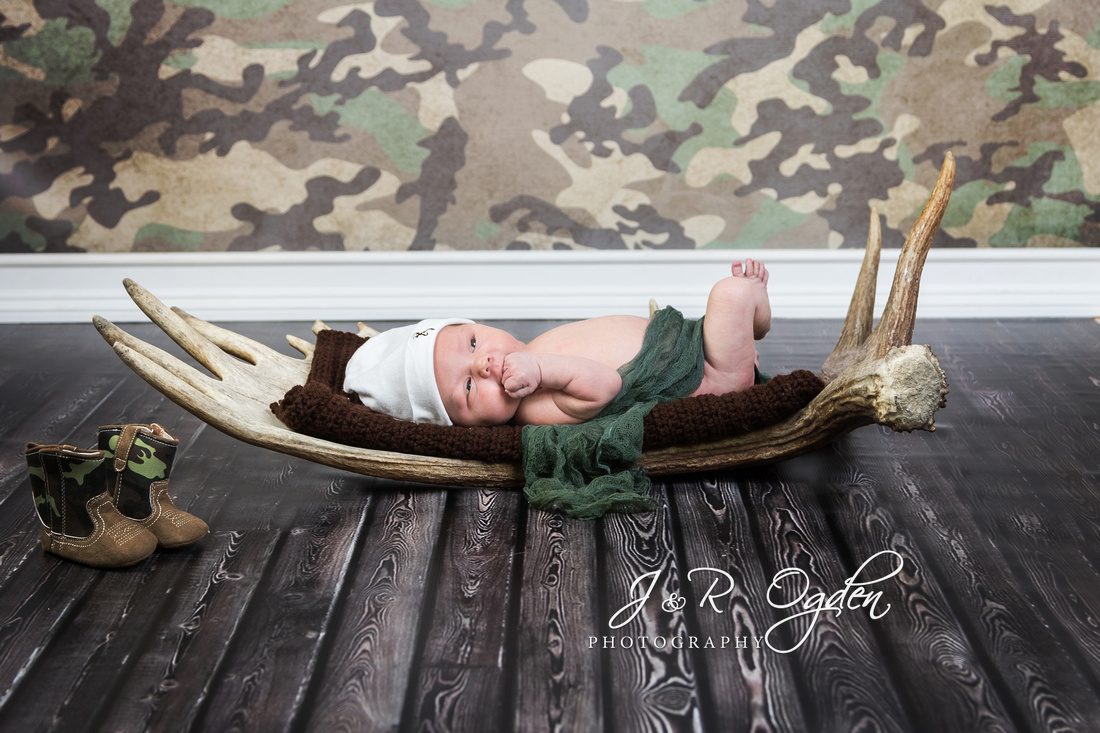 Newborn on Moose Horn / Antler & Camo background portrait - Bangor Maine