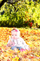 Sitter Photography Packages